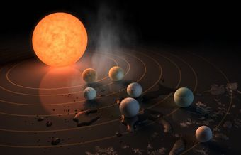 Seven Earth-sized planets found in the habitable zone of a single star