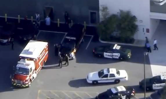 At least 17 killed in mass shooting at Florida high school