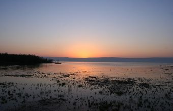 Israel struggles to save the Sea of Galilee