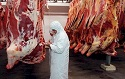 Flanders bans halal and kosher animal slaughter methods