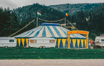 Why additional/special needs parenting is like a circus