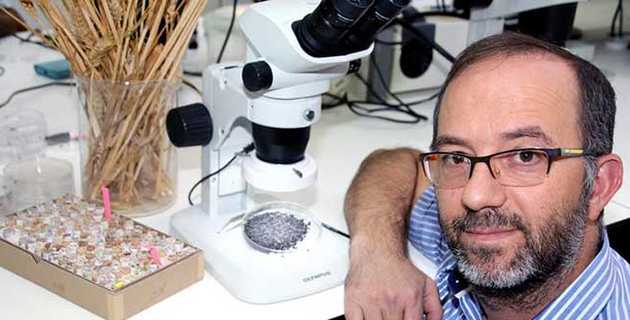 Ehud Weiss, Bar-Ilan University