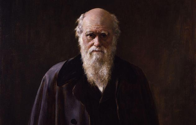 Darwin, collier, 1881