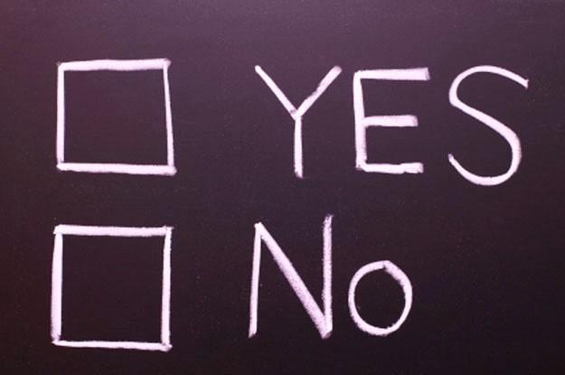 yes, no, referendum
