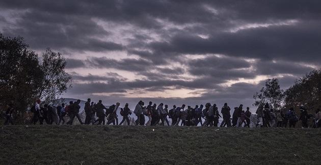 refugees, myths
