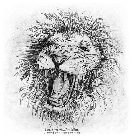 lion, comic